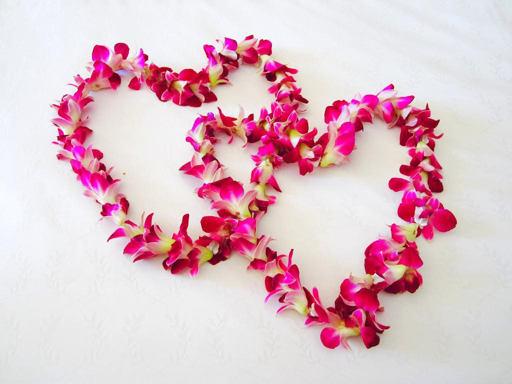 Valentines Day Gift Inspiration!